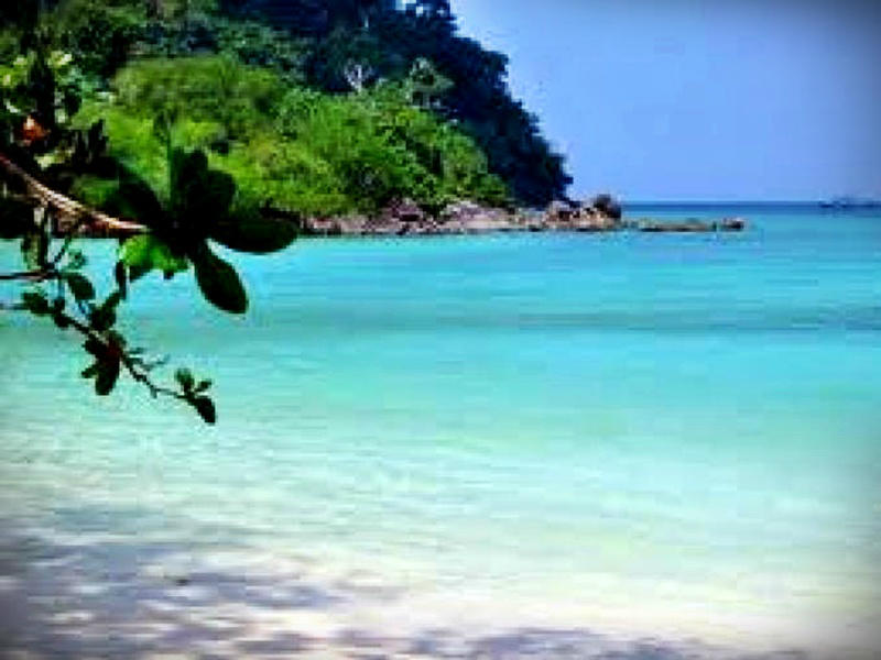 One Day trip to Surin Island (High season only)